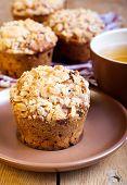Oat Streusel Muffins