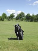 Golfbag Near Green