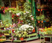 pic of flower shop  - entrance into a small flower shop - JPG