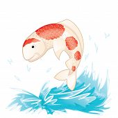 picture of koi  - Koi fish jumping out of the water - JPG