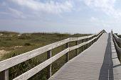 Long Boardwalk To An Ocracoke Beach