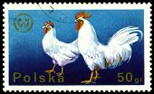 Vintage  Postage Stamp. Cock And Hen.