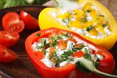 Fresh Peppers Filled With Curd And Dill Close-up Horizontal, Rustic