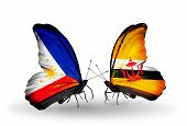Two Butterflies With Flags On Wings As Symbol Of Relations Philippines And Brunei