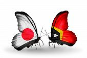 Two Butterflies With Flags On Wings As Symbol Of Relations Japan And East Timor