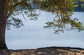 Spring Landscape At Wood Lake