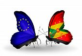Two Butterflies With Flags On Wings As Symbol Of Relations Eu And Grenada