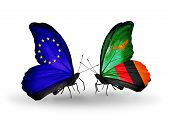 Two Butterflies With Flags On Wings As Symbol Of Relations Eu And Zambia