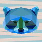Abstract Geometric Polygonal Raccoon