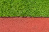 Grass And Track Texture