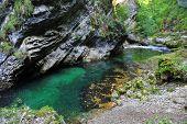 Bled gorge