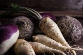 stock photo of root-crops  - root vegetables from the garden on a brown background - JPG