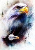 foto of eagle  - painting of two eagles one stretching his black wings to fly on abstract color background - JPG