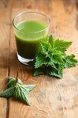 stock photo of nettle  - Nettle leaves and glass of nettle juice - JPG