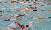 Swimming In A Race 2