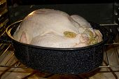 Start  Cooking Turkey poster