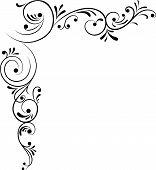 picture of scroll design  - element for design corner flower vector illustration - JPG
