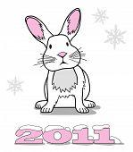 White Rabbit Symbol Of New Year