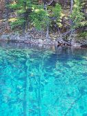 Lake Nellie