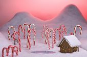 Christmas Candy Cane Forest Pink Sunset Pond