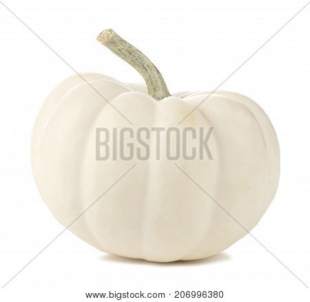 poster of Single White Mini Pumpkin Isolated On A White Background