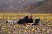 Botanist In Death Valley