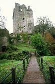 Path To Blarney Castle