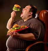 Diet failure of fat man eating fast food hamberger. Happy overweight person with wide-open mouth gre poster