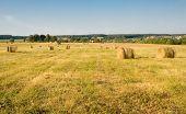 Rural Landscape - Summer Hay
