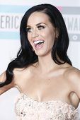LOS ANGELES - NOV 21: Katy Perry at the 2010 American Music Awards held at the Nokia Theater in Los