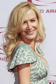 SANTA MONICA - JUNE 8:  Angela Kinsey at the sixth annual TV Land Awards held at the Barker Hanger i