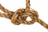Bowline Knot On Palm Cord
