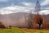 Cloudy Mountain Autumn Landscape With Colorful Forest poster