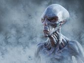 Portrait Of An Alien Creature Surrounded By Smoke While Gazing Into The Future, 3d Rendering. poster