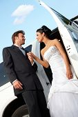 foto of fondling  - Bride and groom on wedding - JPG