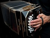 stock photo of aerophone  - Playing the bandoneon traditional tango instrument Argentina - JPG