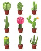 9 cactuses icons set illustration