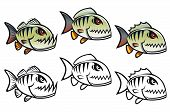 Angry Cartoon Piranha Fish