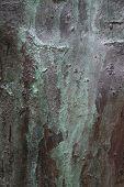 Bronze Surface with Verdigris