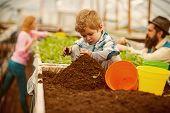 Soil Preparing. Small Boy Preparing Soil For Planting. Soil Preparing Concept. Soil Preparing Of You poster