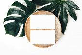 Blank White Business Cards Mockups, Wooden Plate, Aralia And Monstera Leaf Isolated On White Table B poster