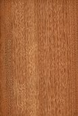 Gabon (wood texture)
