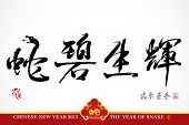 Snake Calligraphy, Chinese New Year 2013 Translation: Snake Lives the Splendor