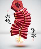 Galleta del fuego 3D de la traducción del año nuevo chino: el retorno de la primavera
