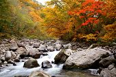 image of fukushima  - Autumn colours of Nakatsugawa valley in Fukushima Japan - JPG