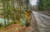 Wooden Bridge On Secluded Logging Road