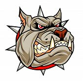 Angry Dog Head