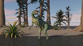 foto of dilophosaurus  - dilophosaurus on shore - JPG