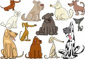 Cartoon Dogs Or Puppies Big Set