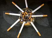 Cigarettes Balanced On A Ashtray